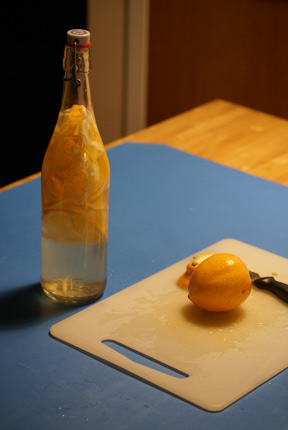 meyer lemon shot How to Make Your Meyer Lemon Craze Last