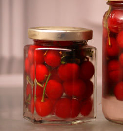 canned cherries Flavor of week: Sour Cherries