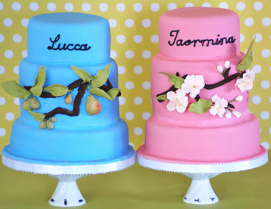 twins cake4 Cakes for Twins